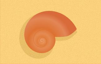 sea shell in inkscape
